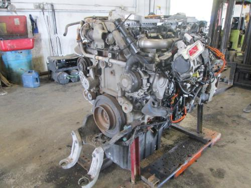DETROIT DD15-CASCADIA EVOLUTION (2013 UP) Engine Assembly