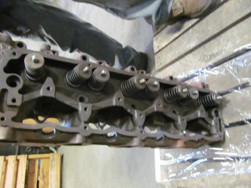 INTERNATIONAL DV550 Cylinder Head