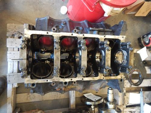 INTERNATIONAL DT 466E Cylinder Block