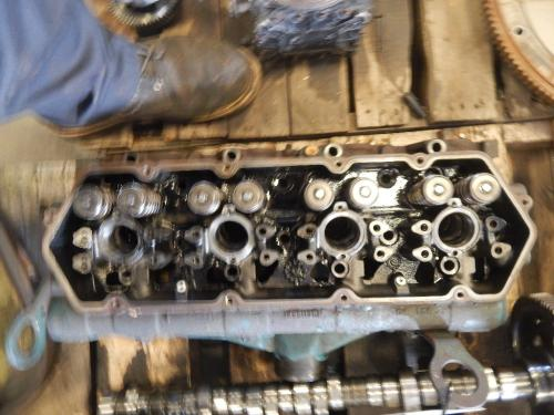 INTERNATIONAL T444E Cylinder Head