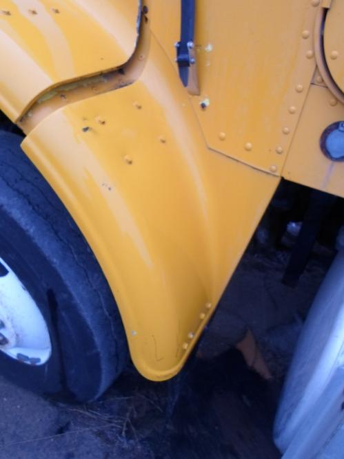 FREIGHTLINER FLC120S Fender Extension